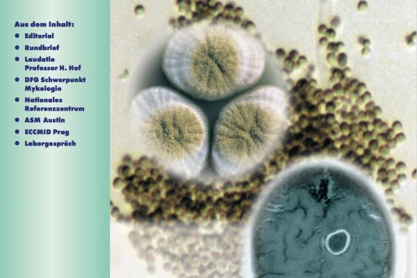 Mykologie Forum 2:2004